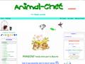 Tienda online accesorios mascotas
